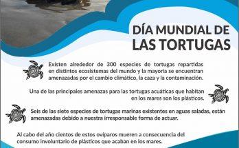 DIA_TORTUGA